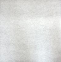 Tissu de filtre pour BIO-CIRCLE HP 400 x 400 mm