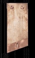 SURFOX Schweissnahtreinigung Zubehör - Elektrode - SURFOX 304 - 204 - 305 - 205